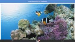 Undersea World HD Wallpapers screenshot 2/6