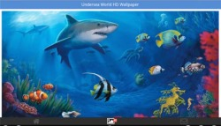 Undersea World HD Wallpapers screenshot 4/6