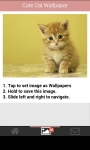 Cute Cat Wallpapers HD screenshot 3/6