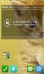 Cute Cat Wallpapers HD screenshot 5/6