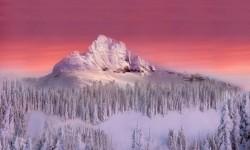 Beautiful views of White Mountain Live Wallpaper screenshot 3/6