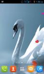 Swan Live Wallpaper Best screenshot 3/4