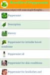 Benefits of Peppermint screenshot 2/3
