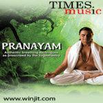 Music for Pranayam Lite screenshot 1/2