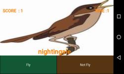 FlyorNot - chidiya udd  screenshot 4/6