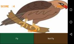 FlyorNot - chidiya udd  screenshot 5/6