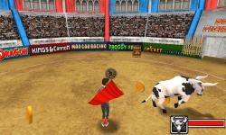 Bull Fighter screenshot 2/3