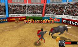 Bull Fighter screenshot 3/3