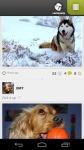Yummypets - The social petwork screenshot 2/4