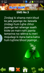 Sad Love Shayari screenshot 2/3