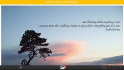 Buddha Wisdom HD Wallpaper screenshot 1/6