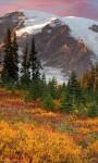 Amazing Spring Mountains views Wallpaper screenshot 1/6