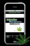 Marijuana Truth screenshot 1/1