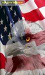 American Eagle Flag screenshot 3/3