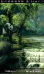 PANDA WATERFALLS LWP screenshot 1/3