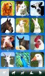 Zoola animals - Best animal app for kids screenshot 1/6
