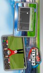 Cricket Play 3D - Live The Game  screenshot 4/6