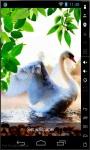 Lonely Swan Live Wallpaper screenshot 2/2