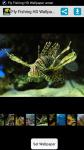 Fly Fishing HD Wallpaper screenshot 1/4
