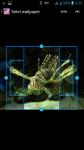 Fly Fishing HD Wallpaper screenshot 3/4