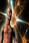 Astounding Facts about the human body screenshot 2/5