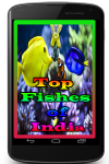 Top Fishes of India screenshot 1/3
