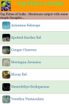 Top Fishes of India screenshot 2/3