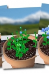 Flower Garden - Grow Flowers and Send Bouquets screenshot 1/1