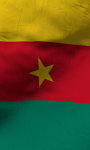Cameroon flag Free screenshot 3/5