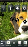 Cute Beagle Puppy Live Wallpaper screenshot 2/3