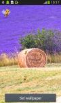 Lavender Live Wallpapers screenshot 1/6