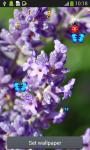 Lavender Live Wallpapers screenshot 4/6