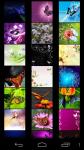 Butterfly Wallpapers free screenshot 2/5
