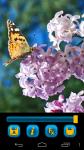 Butterfly Wallpapers free screenshot 3/5