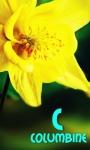 kids story flower abc screenshot 3/3