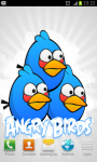 Angry Birds HD Wallpapers Col1 screenshot 3/6