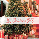 101 Christmas SMS S40 screenshot 1/1