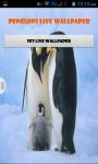Penguins Live Wallpaper Best screenshot 1/4