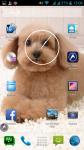 Dog Images Free screenshot 6/6