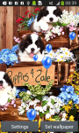 Puppies Live Wallpapers screenshot 3/6