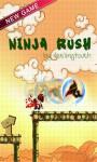 Ninja Rush Rush screenshot 1/5