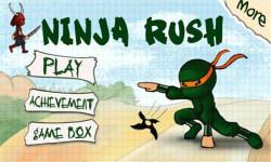 Ninja Rush Rush screenshot 4/5
