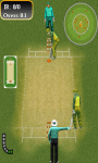 Super Cricket_Xerces screenshot 2/2