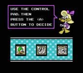 Tiny Toon Adventures screenshot 3/4