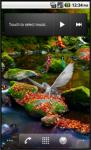 Amazing Mystical Forest screenshot 6/6