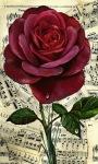 Red Rose LWP screenshot 1/3