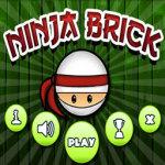 Ninja Brick Mania screenshot 1/3