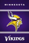 Minnesota Vikings Fan screenshot 3/5