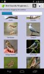 Birds Sound Ringtone screenshot 2/3