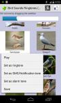 Birds Sound Ringtone screenshot 3/3